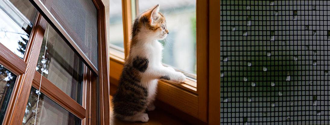 Можно ли установить москитные сетки на деревянные окна и как лучше сделать это?
